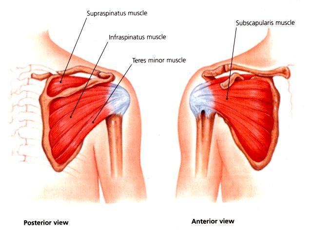 Relief for shoulder pain at night